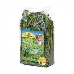 JR FARM Zielony owies 250 g