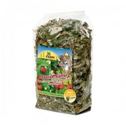 JR FARM liście jagód 100 g