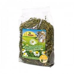 JR FARM Roślina rumianku 100 g