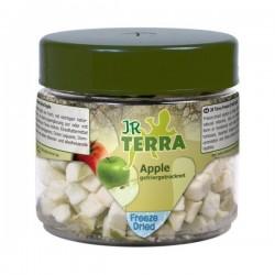 JR Terra liofilizowane jabłko 15 g