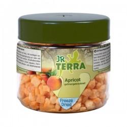 JR Terra liofilizowane suszone morele 20 g