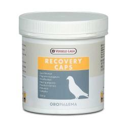 Recovery Caps 350 szt - Kapsułki odżywczo-wzmacniające