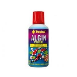 Preparat do zwalczania glonów zielonych ALGIN POND 250 ml TROPICAL