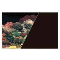 W rulonie dekoracja koralowiec/czarny 50/15 cm ZOLUX