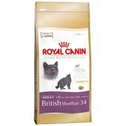 British Shorthair 34 400 g Royal Canin