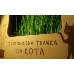 Trawa ekologiczna dla kotów - świeża