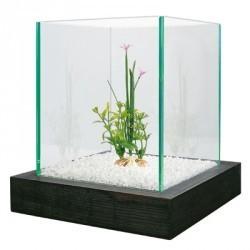 Akwarium Aqua Bamboo Cube 3,55 l ZOLUX