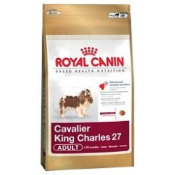 Cavalier King Charles 27 1,5 kg Royal Canin