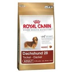 Dachshund 28 0,5 kg Royal Canin