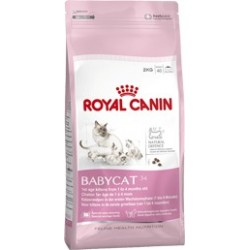 Babycat 34 400 g Royal Canin